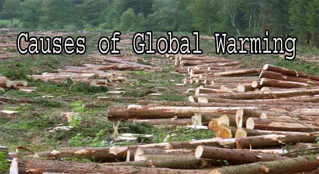 causes and effects of global warming The temperature of the earth is rising at nearly twice the rate it was 50 years ago this rapid rate and pattern of warming, scientists have concluded, cannot be explained by natural cycles alone the only way to explain the pattern is to include the effect of greenhouse gases (ghgs) emitted by humans to come to a.