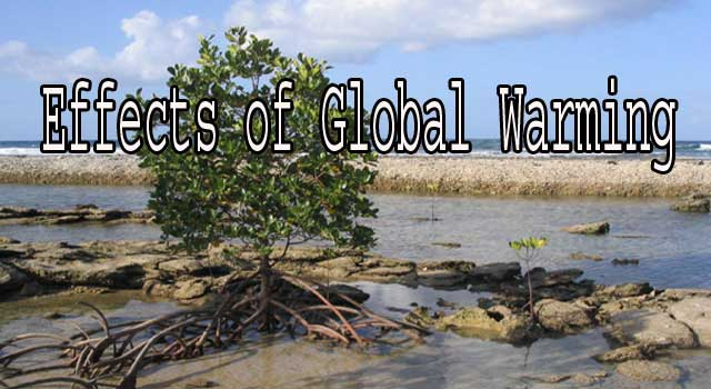 6 Main Effects of Global Warming on Environment