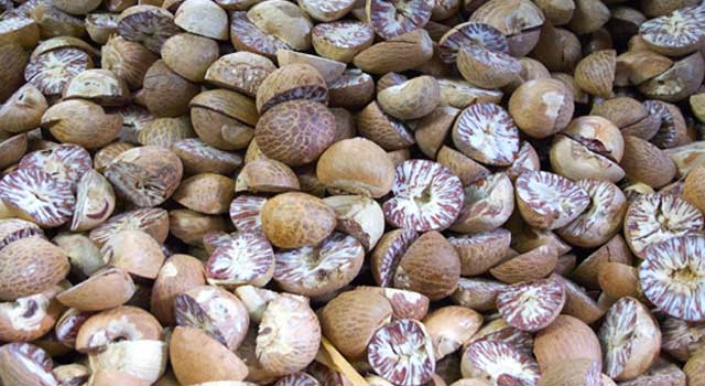 Health Benefits of Nutmeg For Our Body