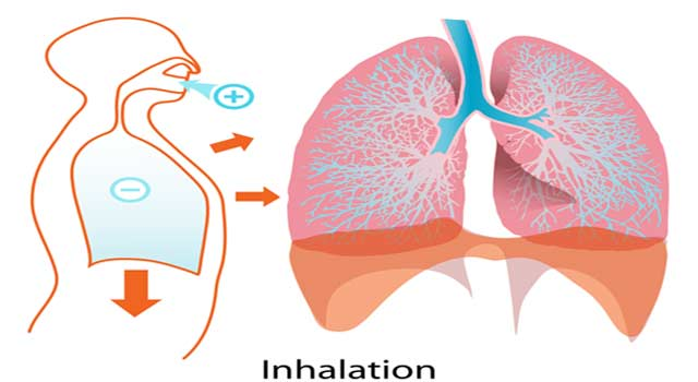 Asthma Definition - What is Asthma
