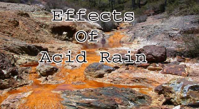 an overview of causes effects and cost of acid rain on the environment An overview of causes, effects, and cost of acid rain on the environment pages 2 words 1,276 view full essay more essays like this: acid rain, sulphuric acid sources, nitrogen oxides not sure what i'd do without @kibin - alfredo alvarez, student @ miami university exactly what i needed.