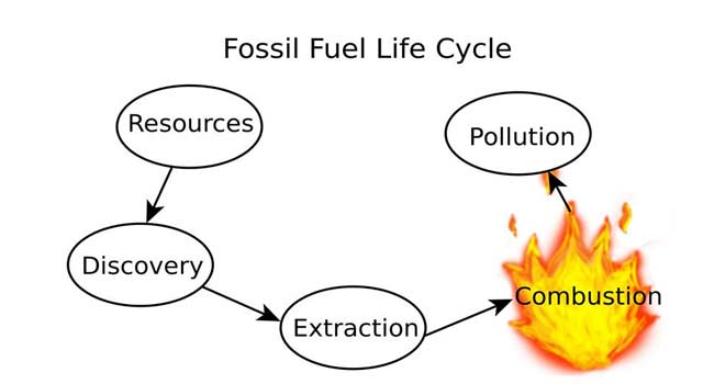 What is the Formation of Fossil fuels