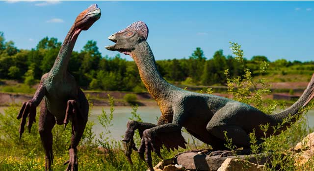 Information About Kinds of Dinosaurs