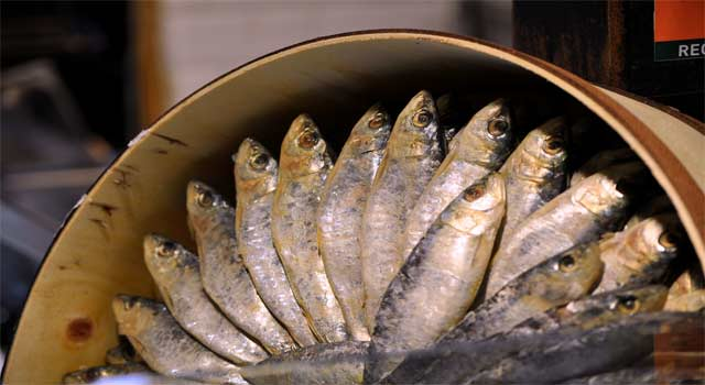 6 Advantages of Eating Sardines for Your Health - HowFlux