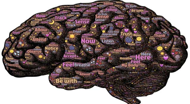 Natural Ways to Keep Your Brain Healthy