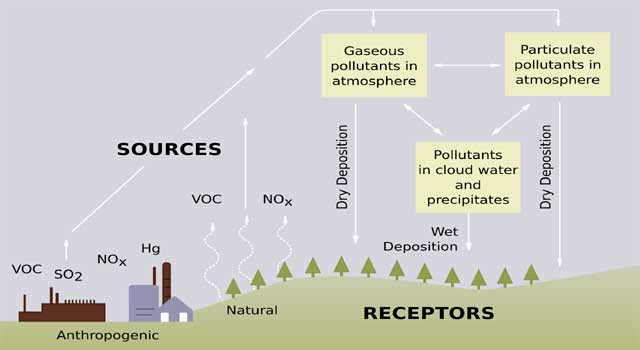 What are Some Major Causes of Acid Rain