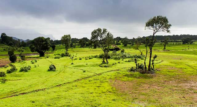 Why Monsoon is Considered as Unifying Bond