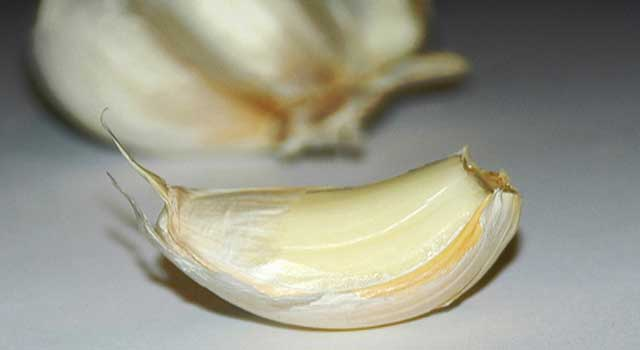 How Garlic Prevents Lung Cancer