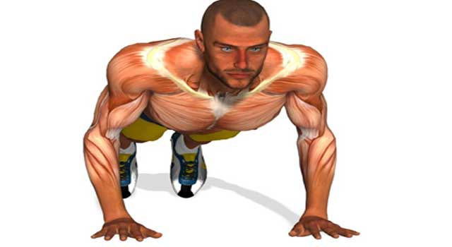 How to Build Body Without Weights