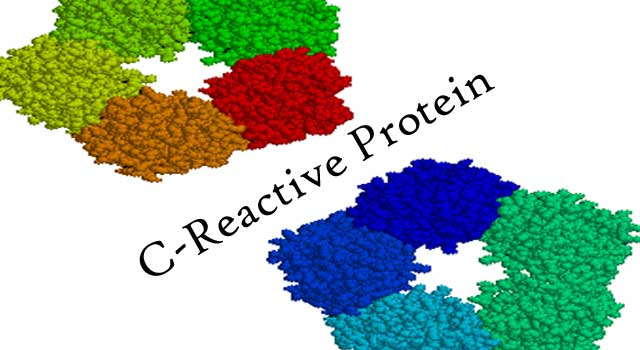 How to Improve C-Reactive Protein Levels