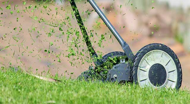 how to mow your lawn correctly