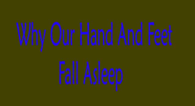 Why Our Hand And Feet Fall Asleep