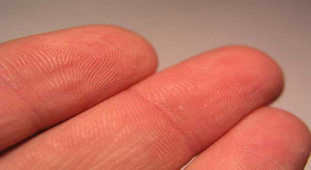Types of Fingerprints and What They Mean