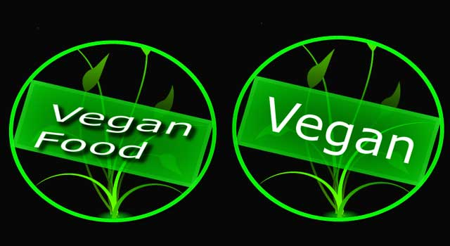 What is a Basic Vegetarian Diet