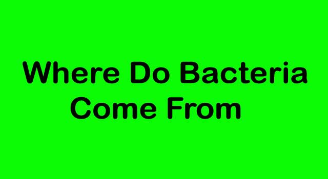 Where Do Bad Bacteria Come From