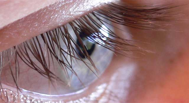 How to Use Eyelash Curler for Beginners