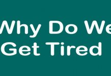 Why Do We Get Tired