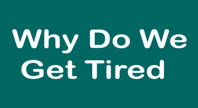 6 Reasons Why Do We Get Tired