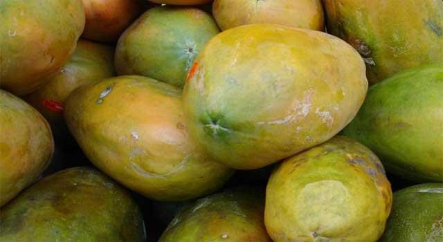 4 reasons Why to Avoid Papaya during Pregnancy