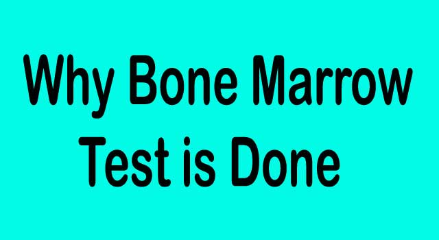 Why Bone Marrow Test Is Done for Anemia