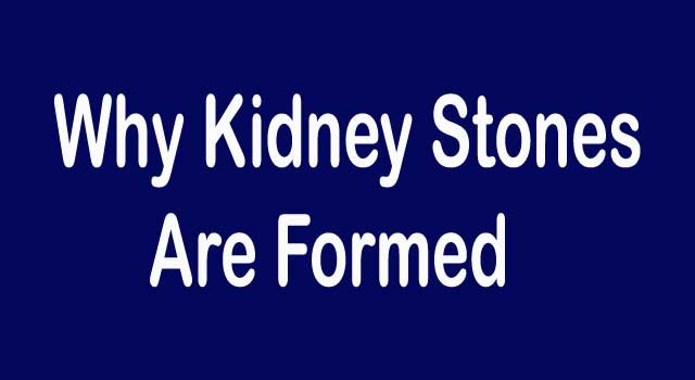 Why Kidney Stones Are Formed?